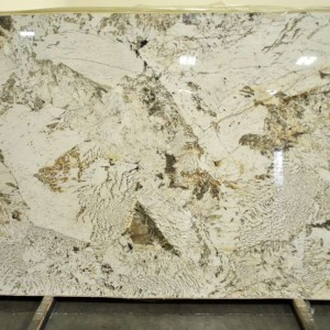 Alpinus Granite Polished Slab