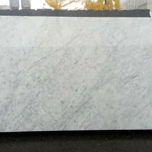 Carrara White C Extra Marble Honed White Slab
